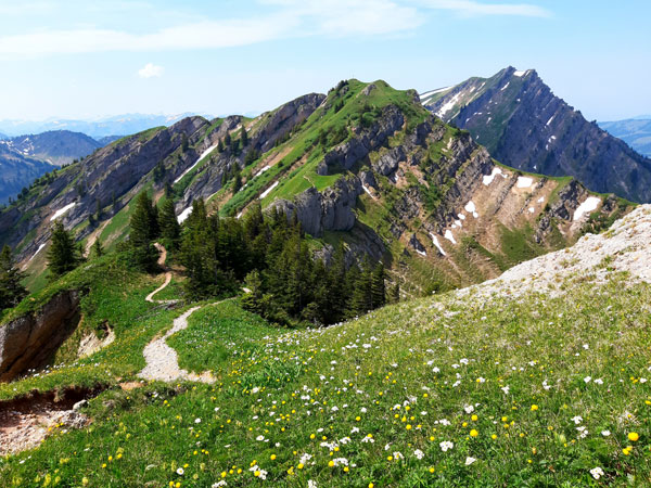 Blick zurück zum Gündleskopf und  Rindalphorn (hinten)