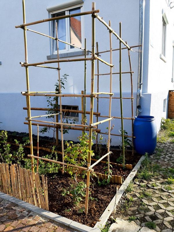 Bambusgerüst vor Nachbars Haus