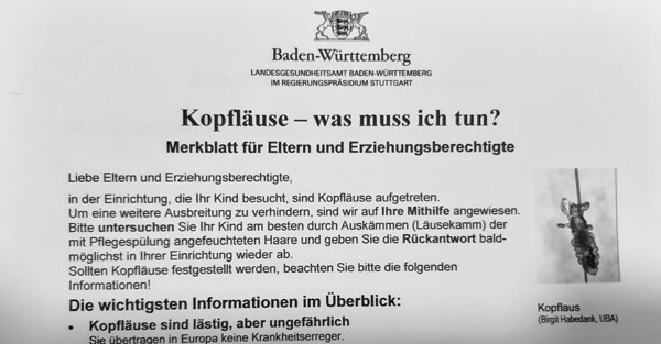 "Merkblatt: ""Kopfläuse - was muss ich tun?"""